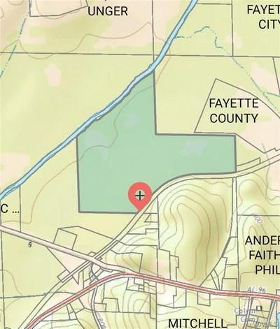 0 COUNTY ROAD 37, Fayette, AL 35555 - Photo 1