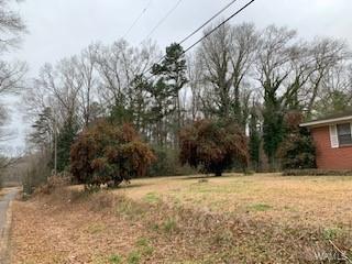 8734 ARGONNE FOREST DR, Duncanville, AL 35456 - Photo 2