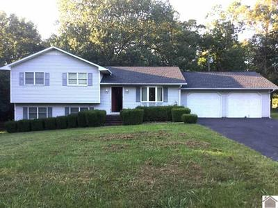 88 MOON LOOP, Benton, KY 42025 - Photo 1