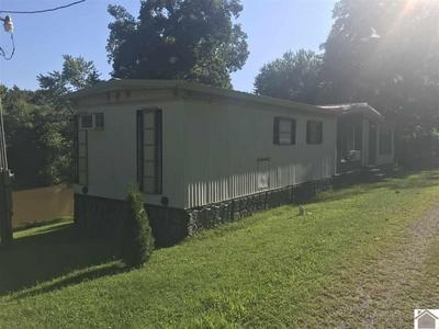 766 TOLU RD, Salem, KY 42078 - Photo 2