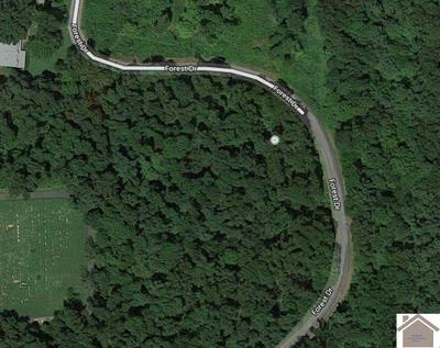 00 FOREST DRIVE, Benton, KY 42025 - Photo 2