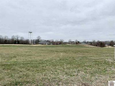 LOT 46 CLUB HOUSE DRIVE, Ledbetter, KY 42058 - Photo 1