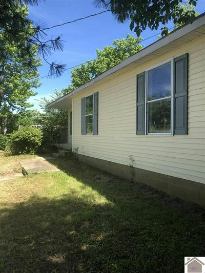 229 GREEN ST, WICKLIFFE, KY 42087 - Photo 1