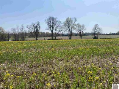 LOT #5 BAKER CEMETERY RD., Princeton, KY 42445 - Photo 2