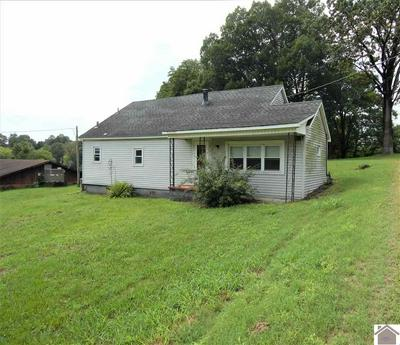 2293 US HIGHWAY 641 N, Benton, KY 42025 - Photo 1