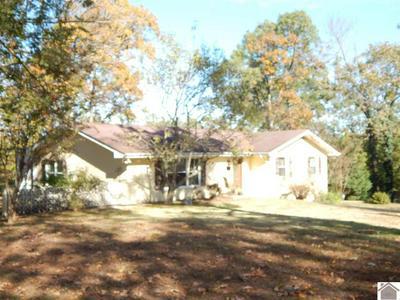 1829 SLEDD CREEK RD, Gilbertsville, KY 42044 - Photo 2
