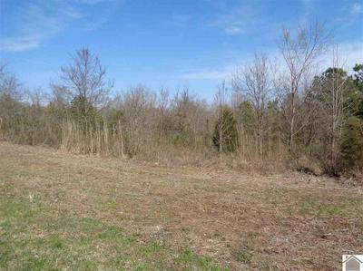 31 WILDCAT DR, MURRAY, KY 42071 - Photo 2