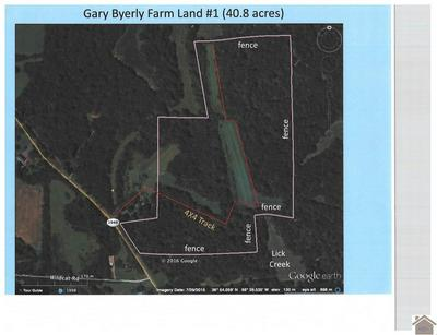 40.8 ACRES ON KY HWY 1949, Symsonia, KY 42082 - Photo 1