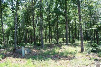 LOT 70 DOCK DRIVE, Murray, KY 42071 - Photo 2