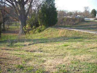 431 N 4TH ST, Wickliffe, KY 42087 - Photo 1