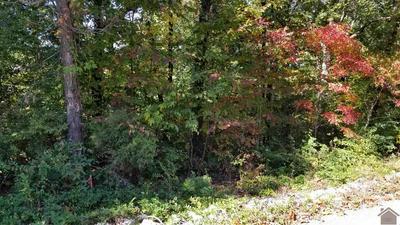 75 LITTLE JOHN DR, Gilbertsville, KY 42044 - Photo 2