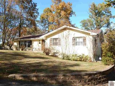 1829 SLEDD CREEK RD, Gilbertsville, KY 42044 - Photo 1