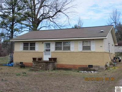 222 SECOND ST, Wickliffe, KY 42087 - Photo 2