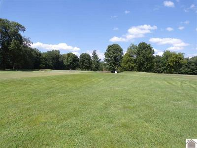 LOT # 20 SUMMERLIN DRIVE, Ledbetter, KY 42058 - Photo 2
