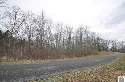 00 HILLS HOLLOW RD, MURRAY, KY 42071 - Photo 2