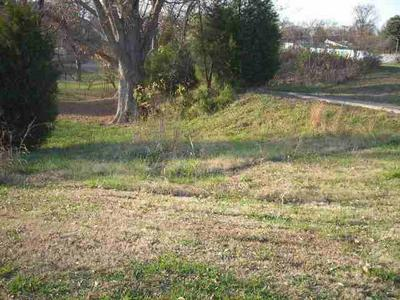 431 N 4TH ST, Wickliffe, KY 42087 - Photo 2