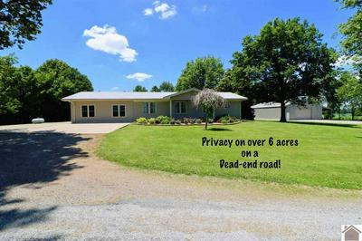 371 COUNTY ROAD 1049, Cunningham, KY 42035 - Photo 1