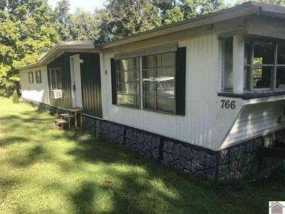 766 TOLU RD, Salem, KY 42078 - Photo 1