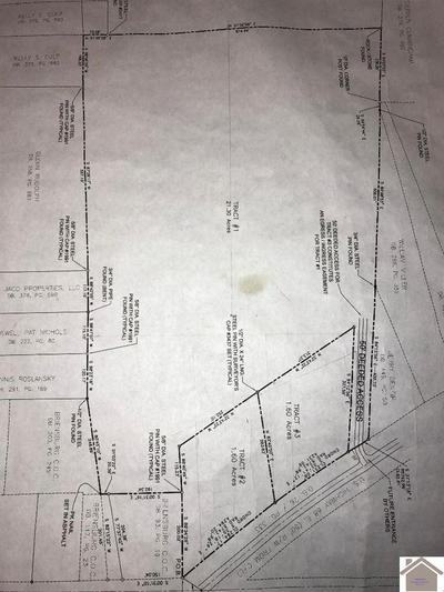 000 US HWY 68 E, Benton, KY 42025 - Photo 2