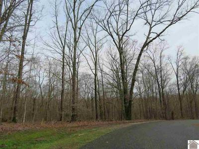 LOT #72 CLIFFWOOD LANE, MURRAY, KY 42071 - Photo 2