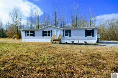 201 BALL PARK LOOP, Ledbetter, KY 42058 - Photo 1