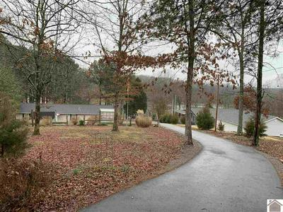 90 CYPRESS HARBOR CT, New Concord, KY 42076 - Photo 1