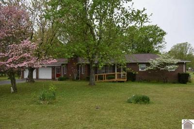 394 BLANKENSHIP RD, Ledbetter, KY 42058 - Photo 1