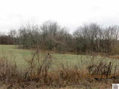 1091 COUNTY ROAD 1100, Bardwell, KY 42023 - Photo 2
