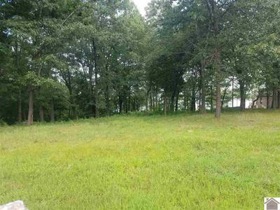 LOT 8 MINNOW, Murray, KY 42071 - Photo 2