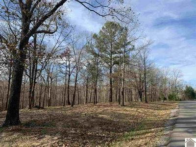 LOT 104 HAYNES CEMETERY ROAD, Murray, KY 42071 - Photo 2