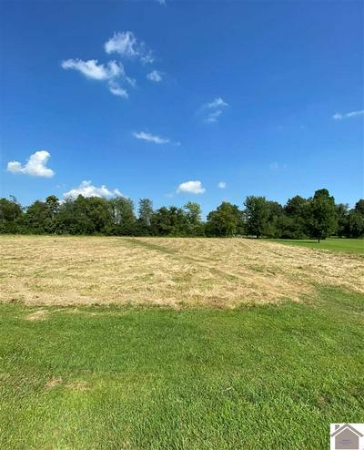 LOT 61 WOODLAND HILL DRIVE, Kevil, KY 42053 - Photo 1