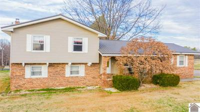 782 PHILLIPS DR, Wickliffe, KY 42087 - Photo 1