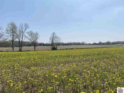 LOT #4 BAKER CEMETERY RD., Princeton, KY 42445 - Photo 2