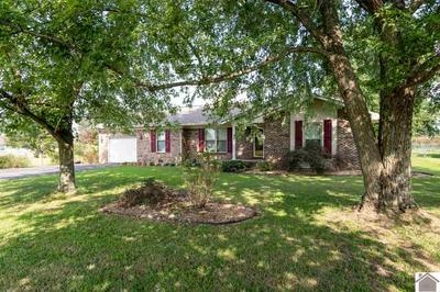60 BENDEFIELD RD, Farmington, KY 42040 - Photo 1
