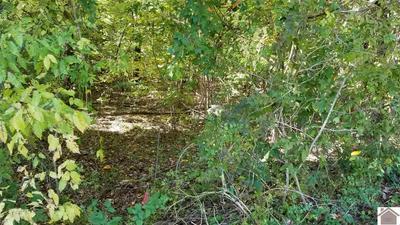 65 LITTLE JOHN DR, Gilbertsville, KY 42044 - Photo 2