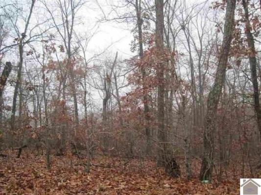 000 IOMGENE, Gilbertsville, KY 42044 - Photo 2