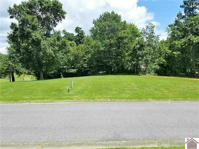 LOT 31 AND B CASCADE DRIVE, Paducah, KY 42003 - Photo 2