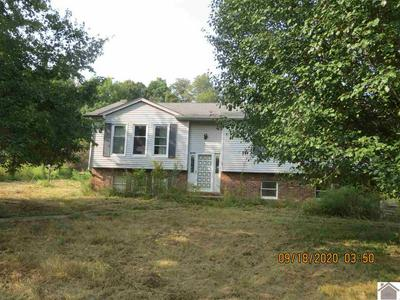 2301 STATE ROUTE 1372, Bardwell, KY 42023 - Photo 1