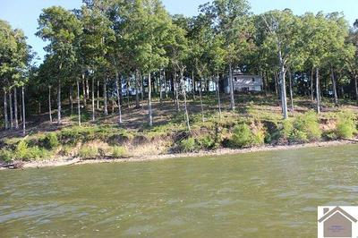 233 LEISURE ACRES LN LOT 3, Murray, KY 42071 - Photo 2