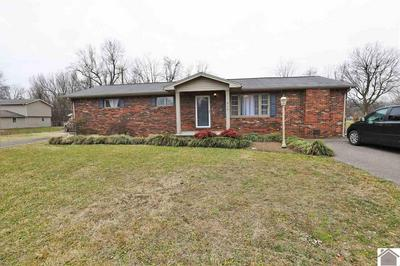 215 ERWIN CIR, Ledbetter, KY 42058 - Photo 2