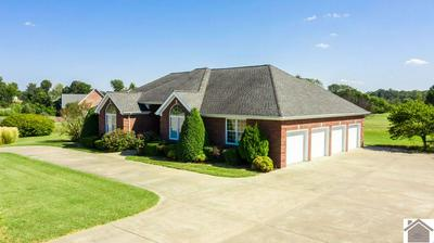 139 CLUBHOUSE DR, LEDBETTER, KY 42058 - Photo 2