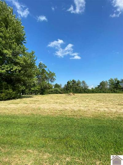 LOT 59 WOODLAND HILL DRIVE, Kevil, KY 42053 - Photo 2