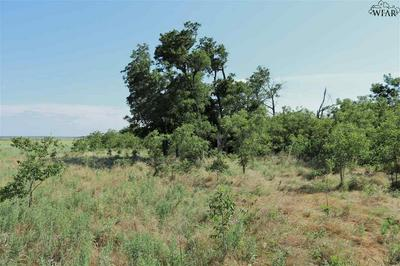 32 ACRES HOPEWELL ROAD, Bowie, TX 76230 - Photo 2