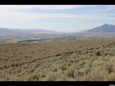 11165 N HIGHWAY 38, Deweyville, UT 84309 - Photo 1