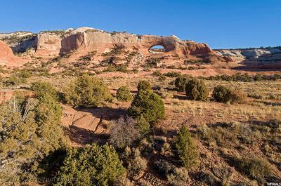 17 W AUSTIN CT, Moab, UT 84532 - Photo 1