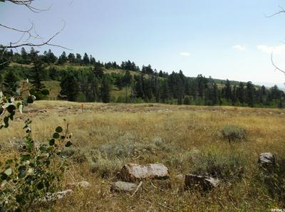 994 NATIONAL FOREST SERVICE RD, Montpelier, ID 83254 - Photo 1