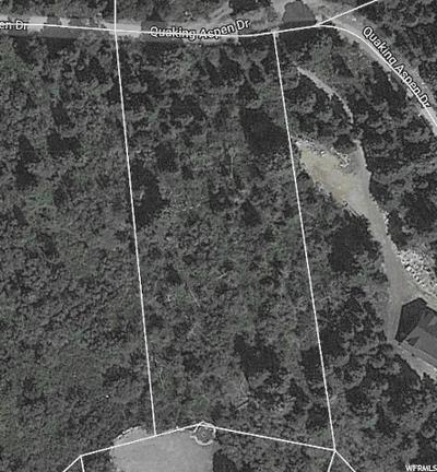 QUAKING ASPEN E DR, Fairview, UT 84629 - Photo 1