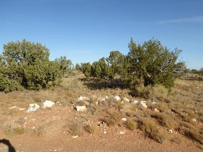 LOT 332 CCR, Heber, AZ 85928 - Photo 1