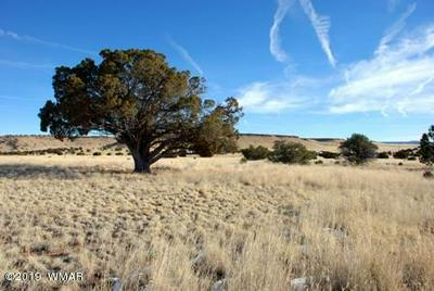 LOT 112 DOVE VALLEY RD, Quemado, NM 87829 - Photo 1