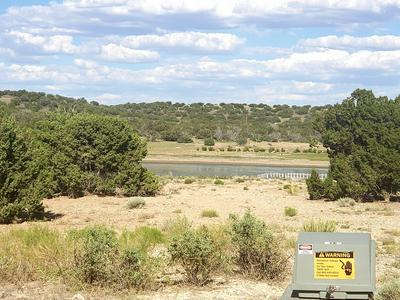 4 COUNTY ROAD 5704, Concho, AZ 85924 - Photo 1